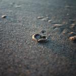 petit coeur de sable - Bretagne 2011
