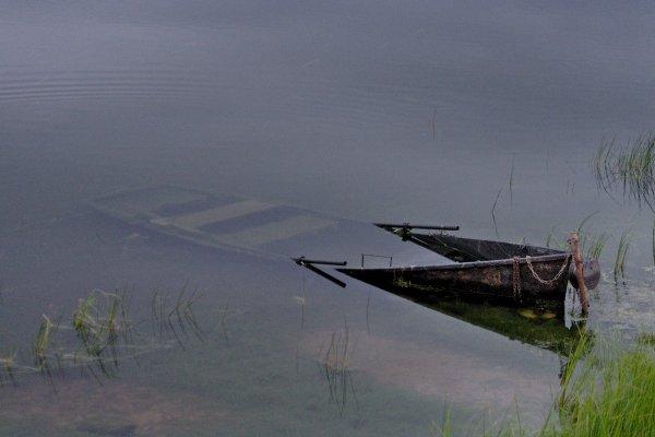 Une barque noyée dans un lac…, juil. 2020